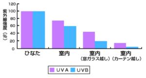 紫外線あびる量